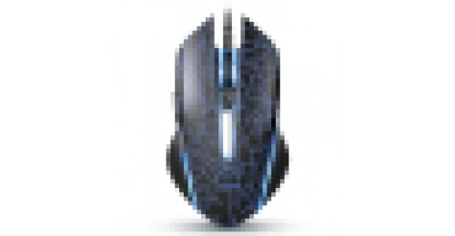 RAPOO V21 GAMING MOUSE